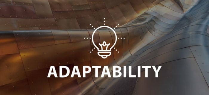 Adaptability Online Lesson by IMAGO Online SEL Platform