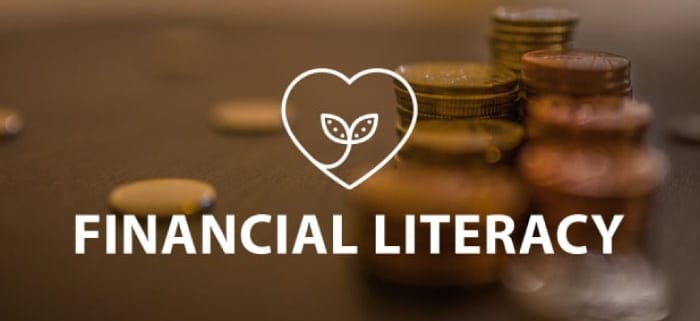 Financial Literacy Online Lesson by IMAGO Online SEL Platform