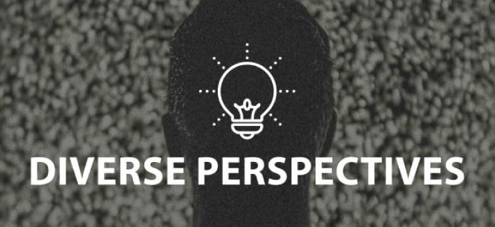 Diverse Perspectives Online Lesson by IMAGO Online SEL Platform