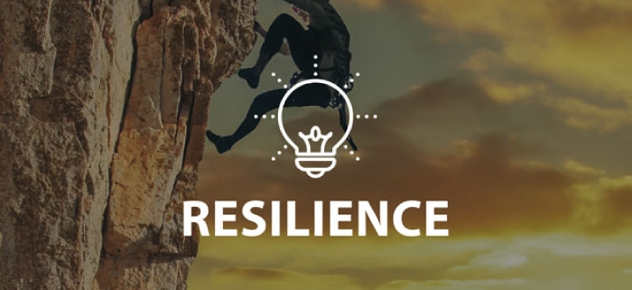 Resilience Online Lesson by IMAGO Online SEL Platform