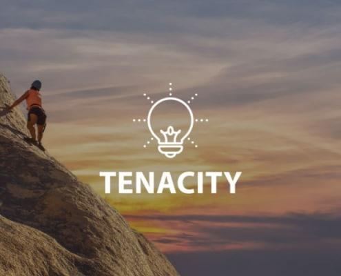 Tenacity Online Lesson by IMAGO Online SEL Platform
